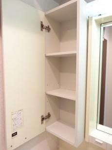 グレイス高輪一丁目1番 洗面化粧台収納