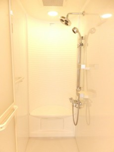 ステートリーホームズ南麻布 シャワールーム