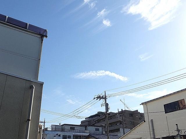 ライオンズマンション桜新町 眺望