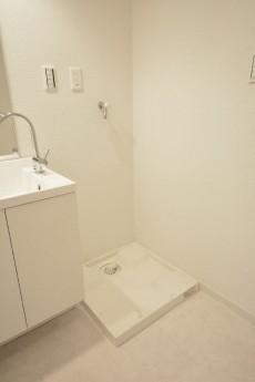 ST青山 洗面化粧台のとなりは洗濯機置場