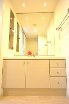 1枚鏡の洗面化粧台