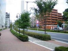 グリーンコーポ東中野