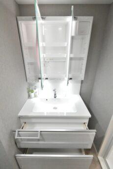チサンマンション千石 洗面室