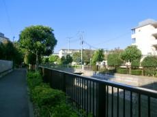 ダイアパレス高円寺 遊歩道