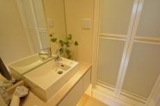 サンビューハイツ元麻布 洋室1シャワールーム洗面台