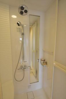 サンビューハイツ元麻布 洋室1シャワー