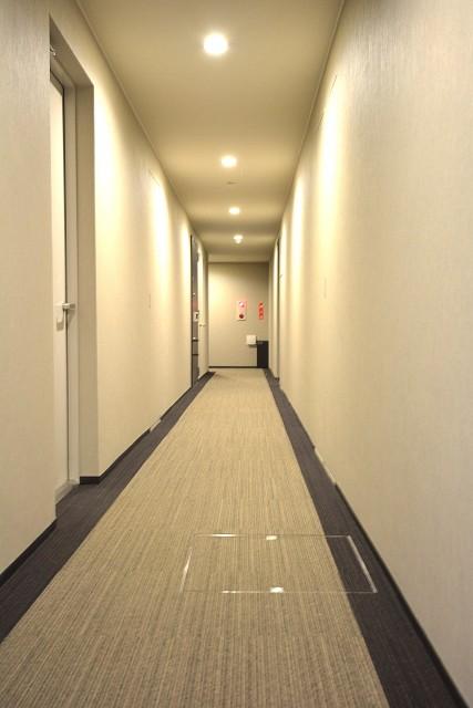 レジデンシャルステート砧 絨毯敷きの内廊下
