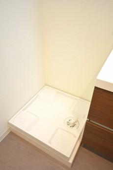 洗面化粧台の横は洗濯機置場