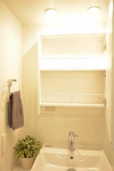 洗面化粧台の鏡の裏は収納です。