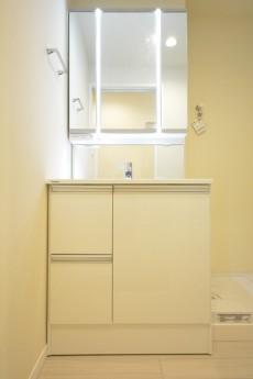 高輪中台マンション 鏡の間にライトがついた洗面化粧台