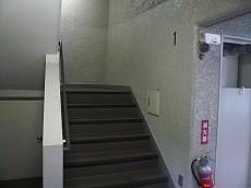 こちらの階段から