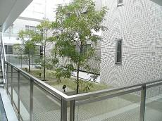 イトーピア自由が丘IDEA エントランス内 中庭