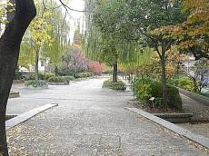 中銀築地マンシオン 公園