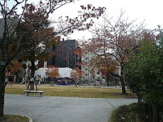 ヴェラハイツ日本橋箱崎 公園