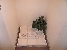 トーア新富マンション 洗濯機置き場です。