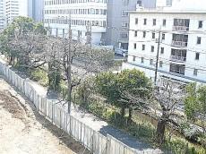 マンション駒場 3階からの眺望303