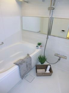 バスルームも清潔な印象