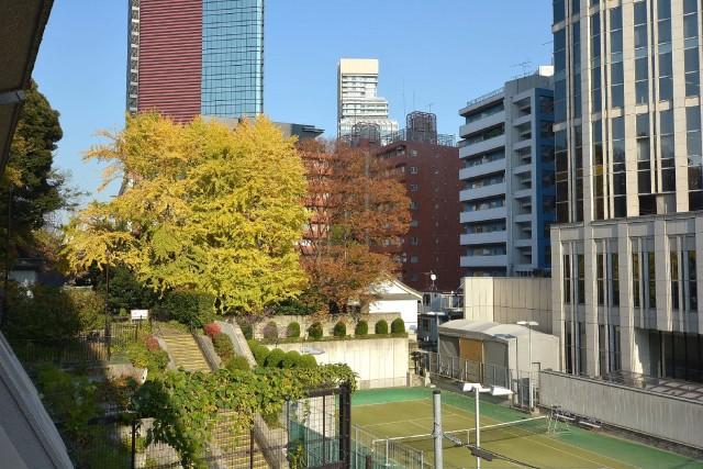 ストークマンション三田 バルコニーからは亀塚公園が見えます