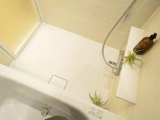 グリーンキャピタル広尾 バスルーム