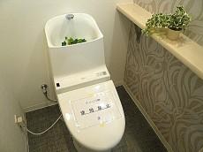 グリーンキャピタル広尾 ウォシュレット付トイレです。