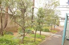 ラインコーポ高井戸 植栽