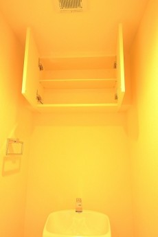 五反田ダイヤモンドマンション トイレ棚