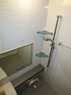 小石川ザ・レジデンス バスルーム