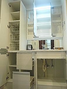 フローレンスパレス多摩川 収納たっぷり洗面化粧台です。