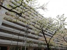 三田ナショナルコート 外観