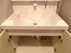 ロイヤルパレス東中野 洗面台