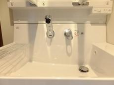 グリーンキャピタル第二笹塚 洗面台