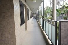 藤和シティコープ桜上水Ⅱ 共用廊下