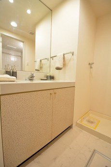 藤和シティコープ桜水上Ⅱ 洗面台