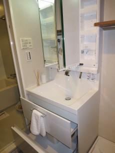 新宿御苑ダイカンプラザ 洗面室