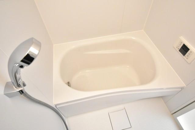 セイワパラシオン笹塚 (36)浴室