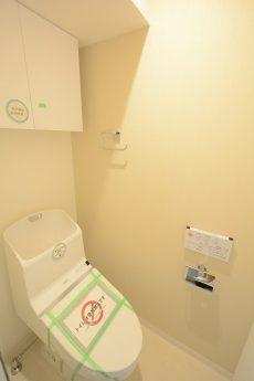ハヤマビル (78)トイレ