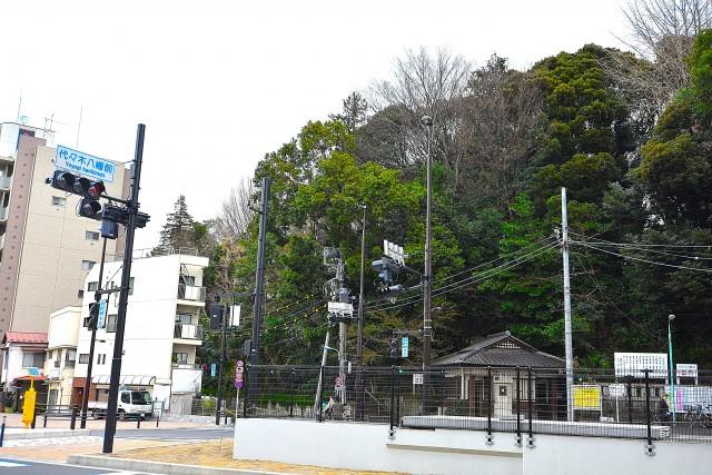 トーカンマンション元代々木 周辺