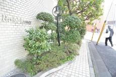 高輪パークホームズ 植栽