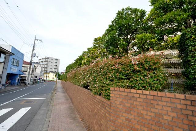多摩川芙蓉ハイツ 前面道路