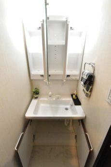 ニューライフ西早稲田 洗面室