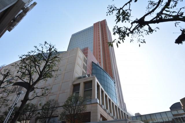 太子堂パレス キャロットタワー