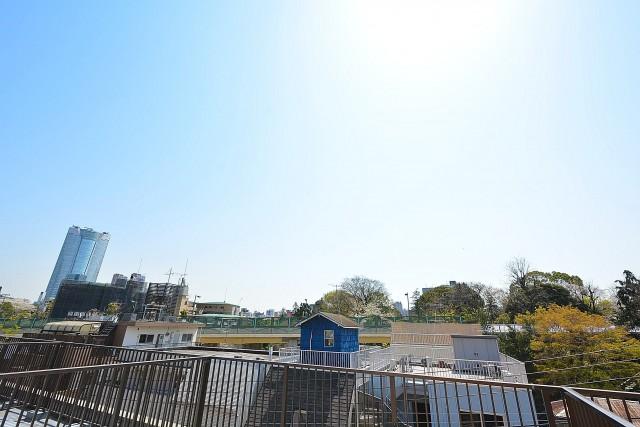 南青山グリーンヒルハウス ルーフバルコニーの眺望