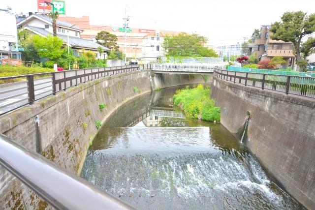 ディアナコート成城 仙川