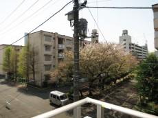 トーア早稲田マンション バルコニーからの眺望