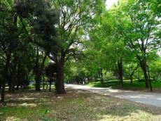 馬事公苑前住宅 きぬた公園