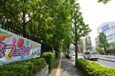 藤和参宮橋コープ オリンピックセンター側歩道