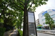 藤和参宮橋コープ オリンピックセンター側バス停