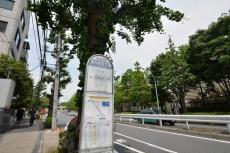 藤和参宮橋コープ マンション側バス停