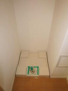 洗面化粧台横の洗濯機置き場
