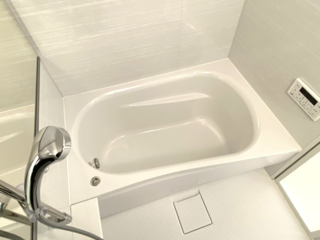 ニューシティハイツ日本橋 浴室